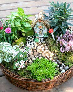Fairy+Garden+DIY moss, succulents, house, mushrooms