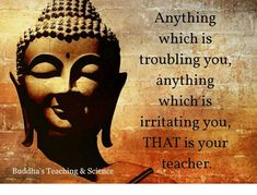 Journey To Enlightenment Buddha Zen, Buddha Quote, Motivational Quotes For Life, Inspirational Quotes, Buddha Thoughts, Buddhist Practices, Buddhist Quotes, Love Energy, Teaching Science