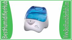 Warm and Cool Mist Humidifiers A Thrifty Mom Recipes