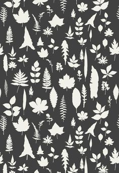 Wallcovering / Wallpaper | Leaves in Graphite | Schumacher