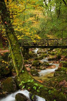 THE BRIDGE by cristovao Oliveira on 500px