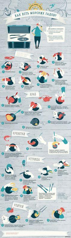 Как правильно есть лобстеров, крабов и улиток кулинария, инфографика, лобстеры, Краб, улитки, длиннопост