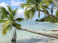 Marie Galante : l'île aux cent moulins
