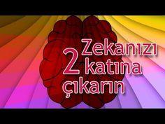 Zekanızı ve Beyninizin Gücünü 2 Katına Çıkarın Usui, Reiki, Astrology, Motivational Quotes, Neon Signs, Youtube, Allah, Inspirational Qoutes, God