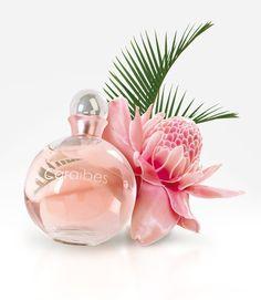PERLES DES CARAÏBES : Rêve d'alizé... Le souffle chaud du parfum «Perle des Caraïbes» vous transporte vers des eaux turquoises et des bancs de sable fin. La femme «Perle des Caraïbes» laisse derrière elle unsillage sucré de jasmin et de vanille. Tels les reflets chatoyants d'une perle, elle nous éblouit. #perfumes #fredericm #parfums #mlm #grasse #fragrance #femme #woman