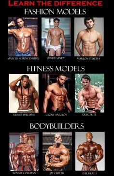 Fashion Models vs Fitness Models vs Body Builders