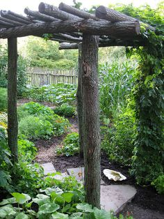 rustic arbor for around the cement in backyard.  With clear lights wrapped around the upper logs and vines growing up corner logs.