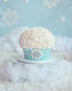 Winter Wonderland Smash Cake Fondant & buttercream topping. Photography by:  DT Photography