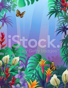 misty Amazon rainforest royalty-free stock vector art
