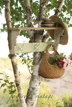 shelf on tree