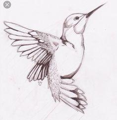 Drawings birds humming bird sketch on deviantart Bird Drawings, Animal Drawings, Drawing Sketches, Pencil Drawings, Sketching, Easy Drawings, Sketches Of Birds, Drawing Birds Easy, Drawing Ideas