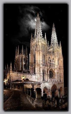 Catedral de Burgoas de noche Spain
