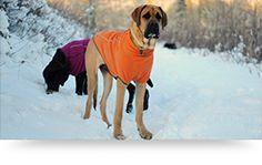 Ruffwear Dog Coats and other dog outdoor products