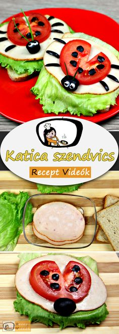 Ladybug Sandwich recipe with video. Detailed steps on how to prepare this easy and simple Ladybug Sandwich recipe! Make Your Own Cookbook, Sandwich Recipes, Food Videos, Recipe Videos, Recipe Cards, Starters, Sour Cream, Kids Meals, Fast Recipes