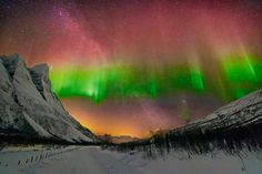 Aurora near Tromsø, Norway | por Wayne Pinkston