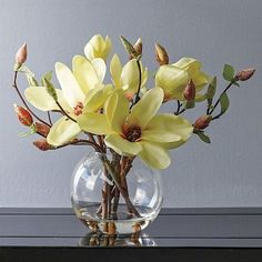 Southern Magnolias Bouquets, gorgeous flower arrangements, beautiful floral centerpieces for home decor Gumps Ikebana Flower Arrangement, Beautiful Flower Arrangements, Flower Vases, Flower Art, Floral Arrangements, Floral Centerpieces, Deco Floral, Arte Floral, Amazing Flowers