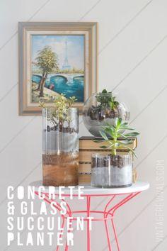 Concrete and Glass Succulent Planter vintagerevivals