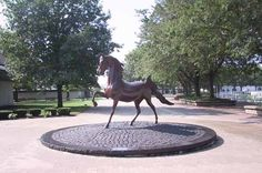 Kentucky Horse Park, Lexington