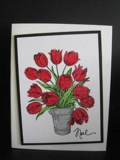 Tulips at Christmas??