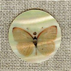 Nacre naturelle imprimée Papillon