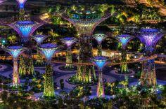 futuristic city Singapore Garden, Singapore Travel, Singapore City, Visit Singapore, Wonderful Places, Beautiful Places, Amazing Places, South Beach Hotels, Magical Tree