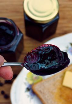 Sweet Elderberry Jelly recipe - ingredients: elderberries, lemon juice, sugar, pectin. Makes an excellent preserve that can be served in both sweet and savory dishes