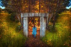 ¿Qué hará ∏ en ese bosque? | Matemolivares