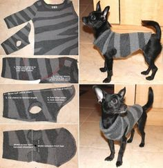 Dog Sweater made using the sleeve of a Jumper/Sweater                                                                                                                                                                                 More