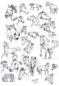 Ballpoint pen sketches by NillaMustikka.deviantart.com on @DeviantArt