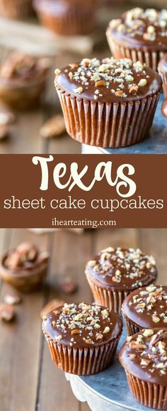 Texas Sheet Cake Cupcakes are light and fluffy chocolate cupcakes topped with a rich fudge frosting. Individual version of Texas sheet cake! Texas Sheet Cake Cupcakes are light and fluffy chocolate cupcakes topped with a rich fudge frosting. Desserts Thermomix, Köstliche Desserts, Dessert Recipes, French Desserts, Dishes Recipes, Plated Desserts, Food Cakes, Mini Cakes, Cupcake Cakes