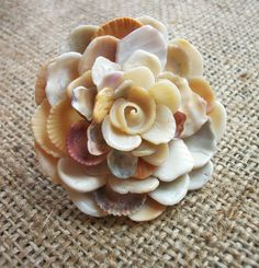 Seashell | Seashell Flower Ring Shell Jewelry by tropEEcal on Etsy