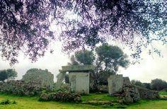 Tales. Menorca
