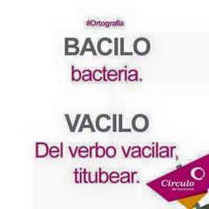 Bacilo