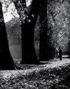 Couple and trees, 1960's, Josef Sudek. (1896 - 1976)