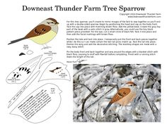 I've so enjoyed the tree sparrows who are wintering in our yard. Sprightly with an endearing musical twitter, they have been frequent visitors to the feeders and provide much entertainment. R…