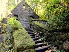 The stone house is located in Forest Park in Portland, Oregon. The park is open from 5am-10pm every day. It was built in the 1930s as a rest house. It's located behind the Audubon Society. You can get there by walking the trail from Lower McCleay Park at the end of NW Upsur, which is .86 miles long.  Photo credit Mike Rohrig