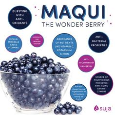 Maqui berry happily grows in over-exploited soils in its native country of Chile, and as such is a great erosion deterrent. Suggested Uses: Add to smoothies, lemonade, yogurt, cereal or porridge, fruit juice, salad dressings, ice blocks, your water bottle - anything! #Super Foods #Raw Foods