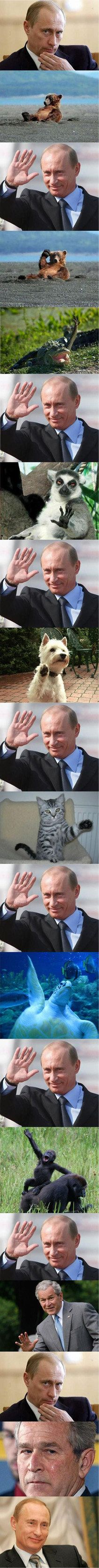 Funny pictures about Friendly Putin. Oh, and cool pics about Friendly Putin. Also, Friendly Putin photos. Funny Photos, Funny Images, Best Funny Pictures, Really Funny, The Funny, Putin Funny, Wladimir Putin, Meanwhile In Russia, Epic Fail Pictures