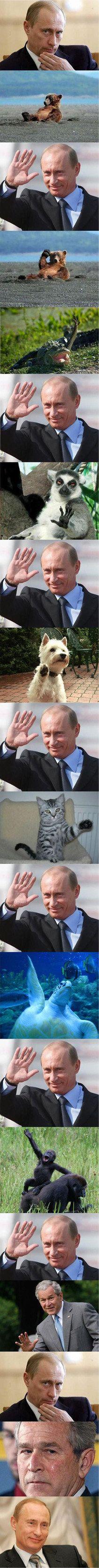 Putin friends