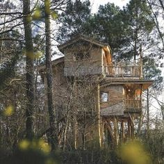the ultimate treehouse Normal House, Poitou Charentes, Village People, In The Tree, Habitats, Tiny House, Nature, Shed, Architecture