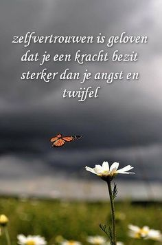 True Quotes, Best Quotes, Qoutes, Dutch Quotes, Thing 1, True Words, Beautiful Words, Beautiful Lyrics, Cool Words