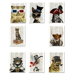 (5) Fab.com | The Cattery 8 Pack