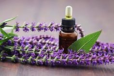 Reduse wrinkles and signs of aging, You can found oils easilly or made at homemade essential oil recipes for aging skin byself Helichrysum Essential Oil, Citrus Essential Oil, Essential Oils, Sage Benefits, Mademoiselle Bio, Pomegranate Oil, Frankincense Oil, Healthy Oils, Best Oils