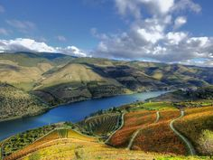 Lithium mines 'would threaten quality of Douro world heritage wines'. Source: Lithium mines 'would threaten quality of Douro world heritage wines' - Portugal Resident Douro Portugal, Visit Portugal, Best Places To Vacation, Douro Valley, World Heritage Sites, Tour Guide, 1, Tours, Landscape