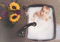 baby in sink photography. Laura hanks photography