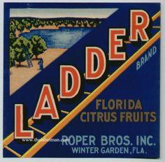 LADDER Vintage Winter Garden, Florida Citrus Crate Label