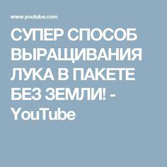 СУПЕР СПОСОБ ВЫРАЩИВАНИЯ ЛУКА В ПАКЕТЕ БЕЗ ЗЕМЛИ! - YouTube