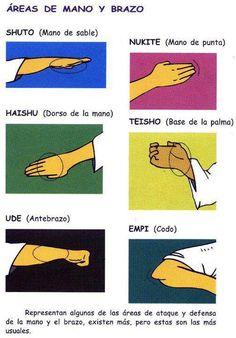 Movimientos generales de mano y brazo