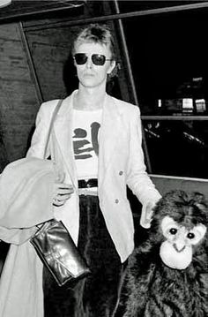 BREAKING NEWS: Darwin the monkey found at IKEA stays at animal sanctuary, now owned by David Bowie.