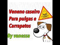 veneno caseiro para pulgas e carrapatos - YouTube